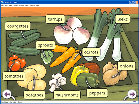 Learn hindi fruits name